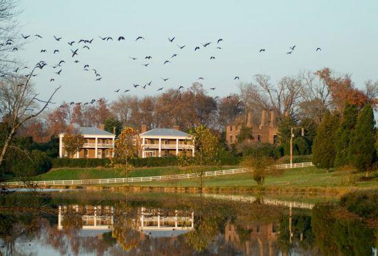 barboursville-1804-inn-ruins_-geese_